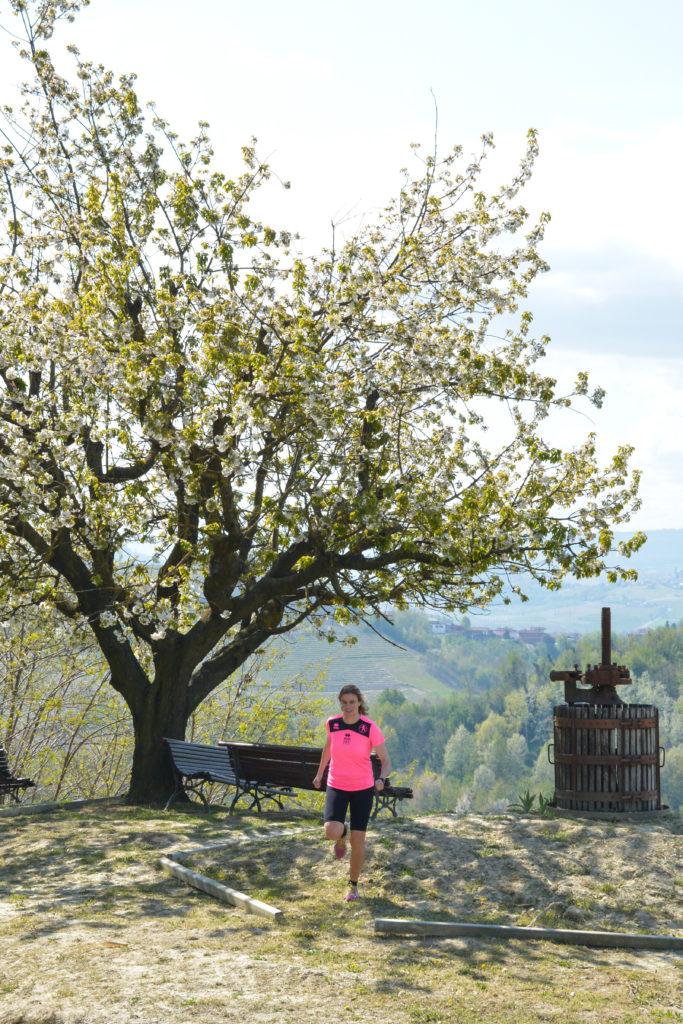 Il torchio di Mombercelli in primavera
