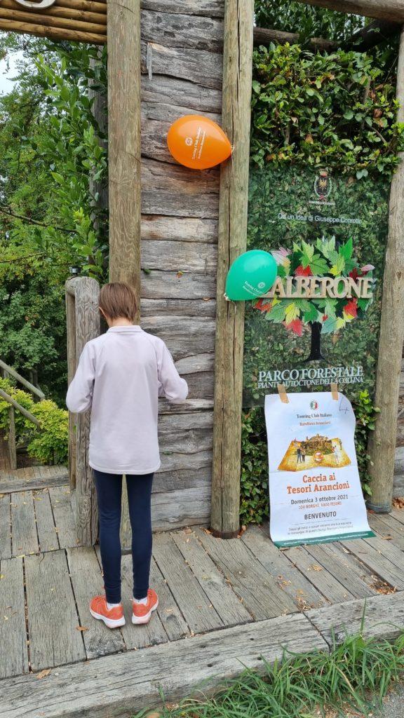 Parco dell'Alberone