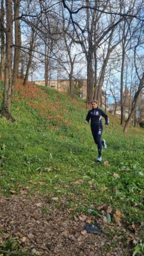 Tulipani a Govone