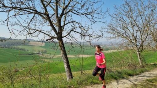 Vista sulla campagna a Celle Enomondo salendo da Merlazza