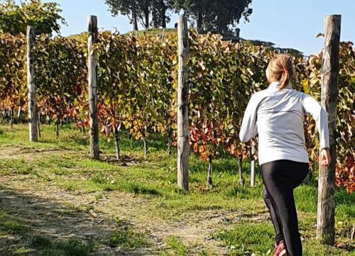Tra le vigne del Roero